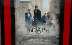 """Everyone's Finding """"Fantastic Beasts"""" in Their Hearts"""
