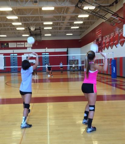 High Hopes for Girls' Volleyball