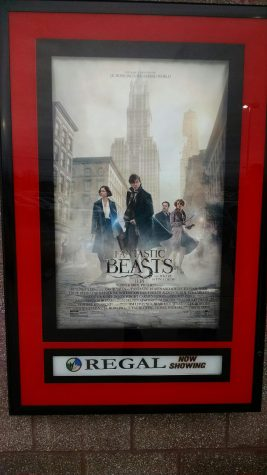 "Everyone's Finding ""Fantastic Beasts"" in Their Hearts"