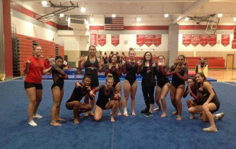 Another Great Season for the Gymnasts!