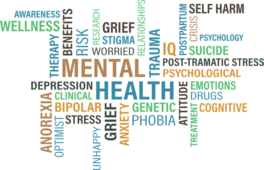 Mental+Health+Services+in+Schools%3A+A+Silent+Epidemic