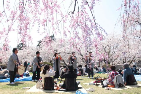 Foods of the Cherry Blossom Festival