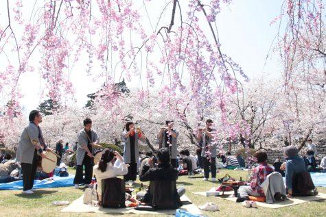 Foods of the Cherry Blossom Festival